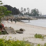 beach-cleanup-03